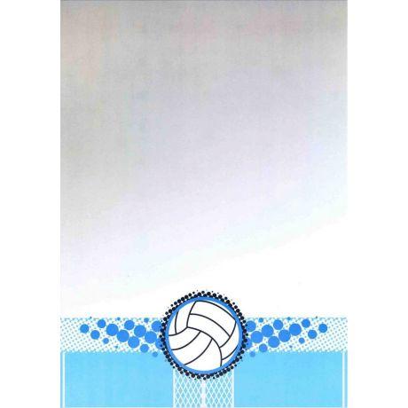 Diplom volejbal
