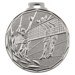 Medaile volejbal stříbrná E8/S