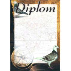 Diplom papírový holub